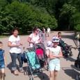 Une trentaine de participants, parents et enfants, équipe de la HG et 2 administrateurs d'AUCREY sont partis à la journée au Parc de la Tête d'Or. Au programme de cette […]