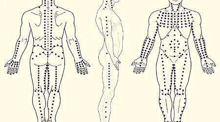 Le Shiatsu est une thérapie manuelle, d'origine japonaise. Venez découvrir ses bienfaits tant au niveau physique que psychologique! Cette conférence sera animée par Sandra VERGER PRIOLET – Praticienne de Shiatsu […]